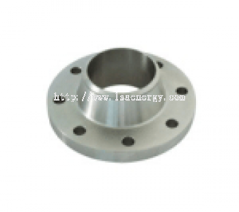SS Welding Neck Flanges