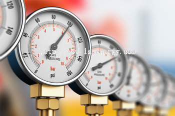PRESSURE PRODUCTS - Bourdon Sensing Pressure Gauges