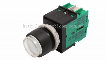 ECS-P4 Extended Type Momentary Pushbutton Switch