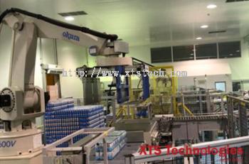 Beverage Sorting/Stacking/Packing Conveyor System