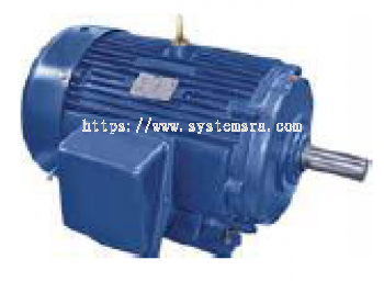 3-Phase Industrial Duty Motor