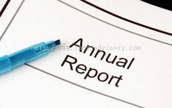 Review Annual Report Statements