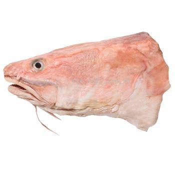 Ling Fish Head