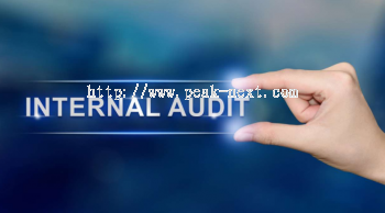 Internal Audit Service