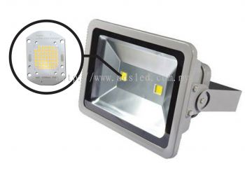 LED Flood Light -100W