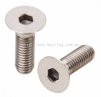 Hex Socket Flat Countersunk Head Cap Screw (CSK)