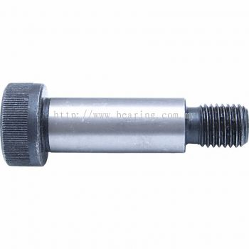 Socket Shoulder Screw