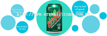 ZEVIA-ZERO CALORIES SODA-GINGER ALE-355ML