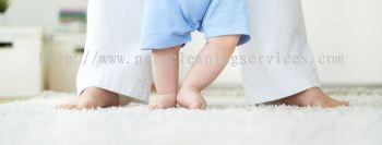 Carpet Sanitizer