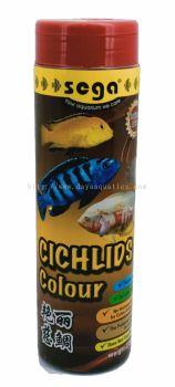 Cichlids Colour