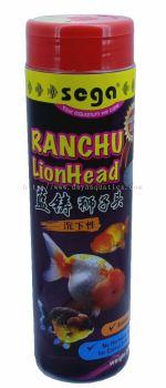 Ranchu Lionhead