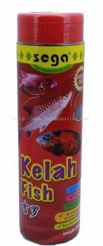 Kelah Fish