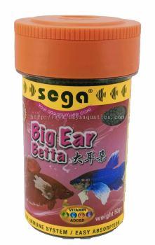 Big Ear Betta