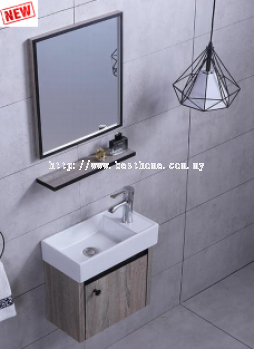 SS CABINET + BASIN RAL3621