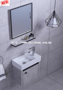 SS CABINET + BASIN RAL3623