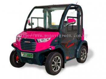 2-seater Electric VV Cart
