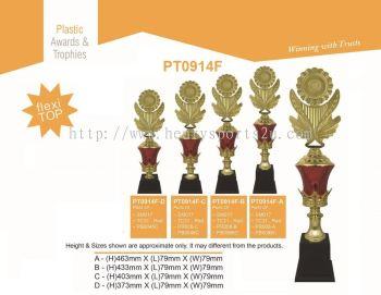 PT0914F Resin Trophy