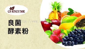 Probiotic Enzyme Powder (Intestine Protector)