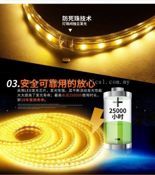 240v 5050 Led Strip Light