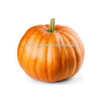 Pumpkin Extract Powder