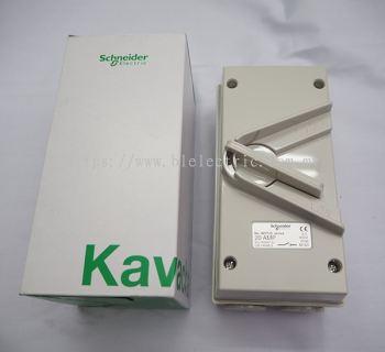 Schneider Weatherproof Isolator IP56