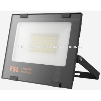 FSL 100w LED SMD Flood Light
