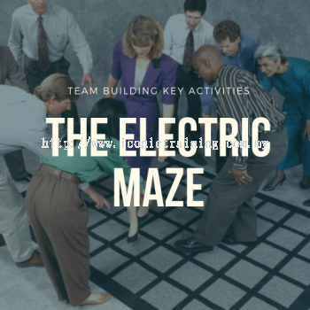 The Electric Maze