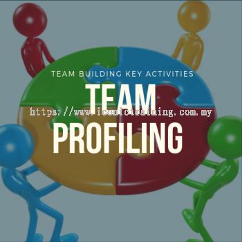 Team Profiling
