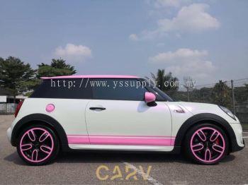 CARV1404 - Matte Pearl White Purple