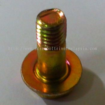 Hex Flange Bolt with Oring Groove