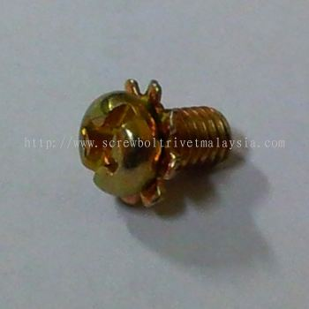 Sems Screw with External Lock Washer