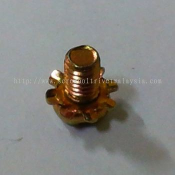 Sems Screw with Tooth Lock Washer