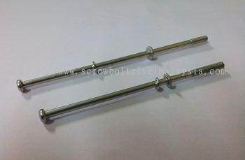Sems Screw-100 mml