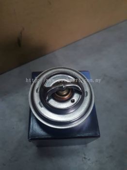 Jaguar Thermostat