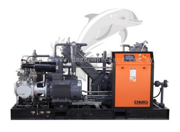 Dophin Series Oil-Free Water Screw Compressor