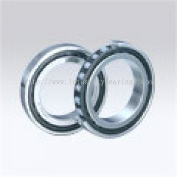 Robust Series of Single-Row Cylindrical Roller Bearings