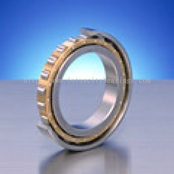 Standard Series of Single-Row Cylindrical Roller Bearings