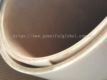 PTFE Etched Brown One Side Sheet