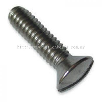 Slotted Oval Head MS