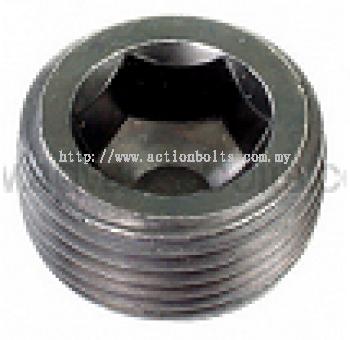 HT 12.9 Socket Pipe Plug