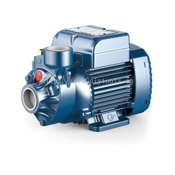 PEDROLLO WATER PUMP, PKm 60