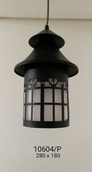 Pendant Light (H10604-P)