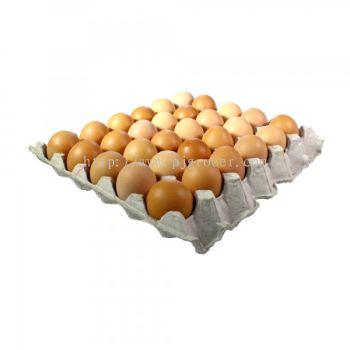 B Grade Egg (Telur) 30's