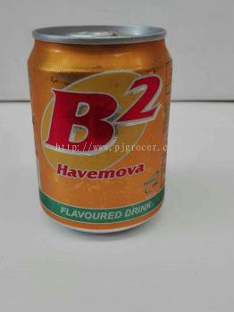 B2 Havemova 250ml