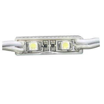 LED Module 3528 2Pixel