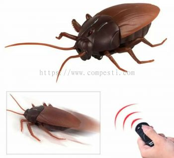 Cockroach Display by Remote