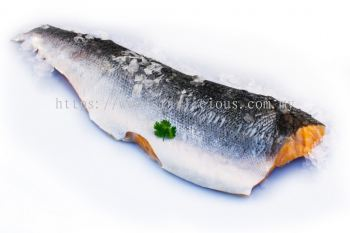 Salmon Frozen Fillet