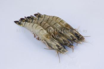 Black Tiger Prawn (Head-On-Shell-On)
