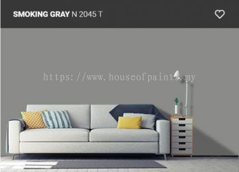 Nippon Paint Q-Shield - Smoking Grey (N2045T)
