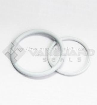 Double coated teflon o-rings (TTV)